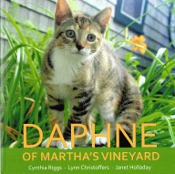 daphne cover